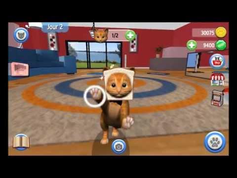 Vídeo do Daily Kitten : gato virtual