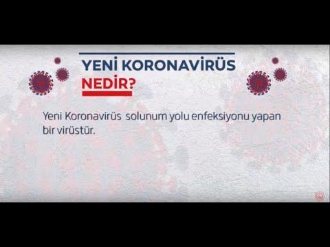 Yeni Korona Virüs Nedir