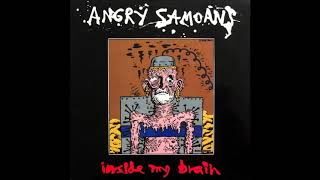 Angry Samoans- Inside My Brain (1990- Full Album)