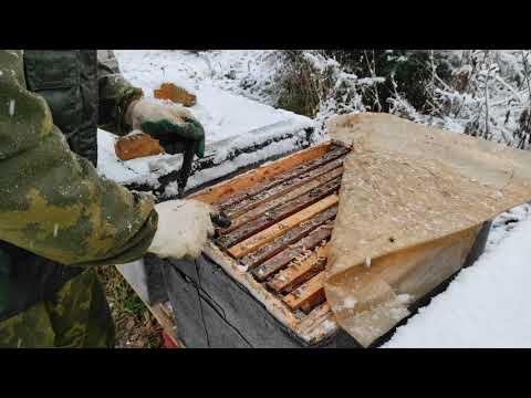 Пчеловодство.Начало зимовки. Сокращение гнезда отбор и хранение лишних медовых рамок в хранилище.