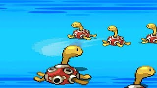 Shuckle  - (Pokémon) - ★~SHUCKLE VS SHUCKLE~★