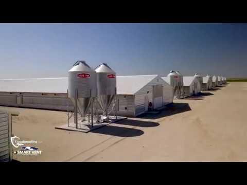 Foster Farms Case Study Thumbnail