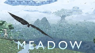 Meadow video