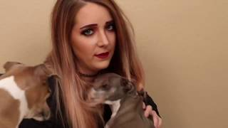 About 3 minutes  of Kermit being an attention starved middle child (Jenna Marbles fan edit)