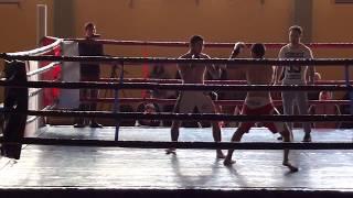MMA WORLD CUP GEORGIA-TBILISI 2017