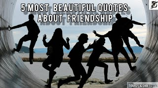 5 Most Beautiful Quotes About Friendship|DarcFlaz Quotes|