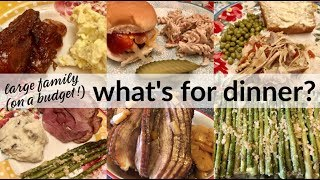WHAT'S FOR DINNER? | 💲FAMILY OF 7 ON A BUDGET💲REAL LIFE MEAL IDEAS