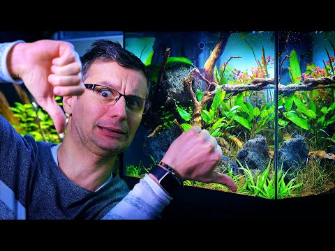 IS THIS BALAZS' WORST PLANTED TANK EVER AT GREEN AQUA?