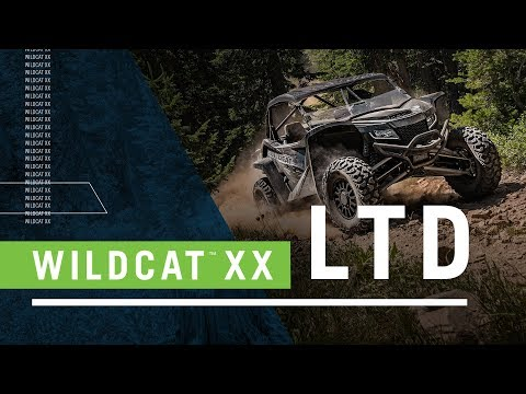 2019 Arctic Cat Wildcat XX LTD in Black River Falls, Wisconsin - Video 1