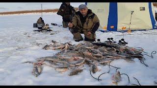 Первый лед 2019 2020. Турбоклев продолжается. Рыбалка в Якутии.
