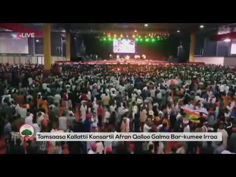 Adam Harun - Michuu Baayyeen Qaba - Afran Qallo Concert - New Oromo