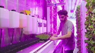 NYC startup takes on urban farming | Curbed Makers