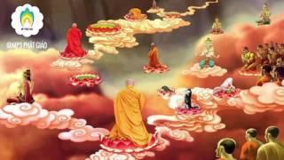 Kể Chuyện Đêm Khuya - Chân Thật Niệm Phật Cực Lạc Hiện Tiền P2 - Những Lời Phật Dạy