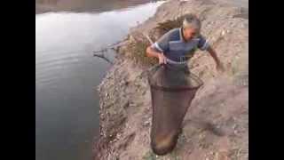 10 11 2013 balıkesir sazan avı  5 kg
