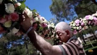Видео: Организация свадьбы в Турции