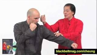 William Cheung + Eric Oram Wing Chun Techniques: Is Wing Chun Effective For Modern Self-Defense?