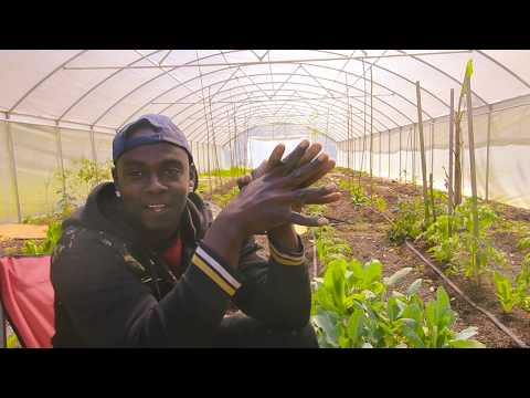 🔴🆕Gardening While Black (Another Victim Speaks Out)