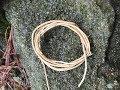 Root Cordage