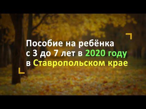 Пособие на ребёнка с 3 до 7 лет в Ставропольском крае в 2020 году