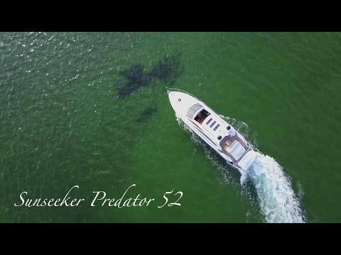 Sunseeker Predator 52 video
