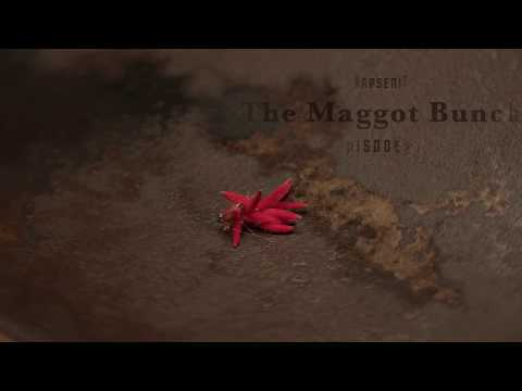 The Maggot Bunch
