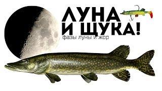 Зимняя рыбалка по фазам луны