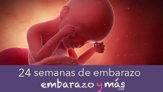 f199683c5 Descargar MP3 de Embarazo A Las 24 Semana gratis. BuenTema.Org