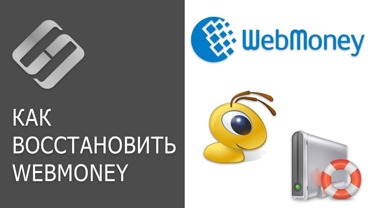 Восстановление файлов WebMoney: ключи kwm, кошельки, история сообщений и доступ к WMKeeper