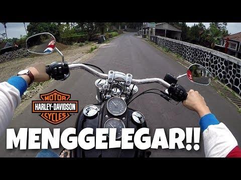 mp4 Harley Davidson Dyna, download Harley Davidson Dyna video klip Harley Davidson Dyna