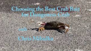 The Best Crab Bait for Catching Dungeness Crabs