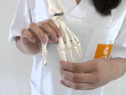 Para el dolor de espalda es la pomada más eficaz