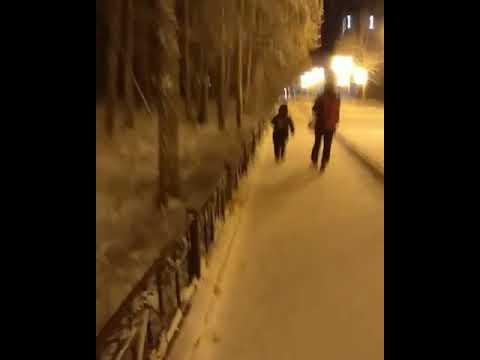 Видеофакт: В парке в Якутске поселилась чернобурая лиса