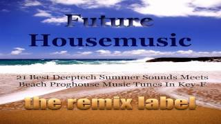 Future Housemusic (Various Artists Key-F Deeptech Proghouse Music Megamix)