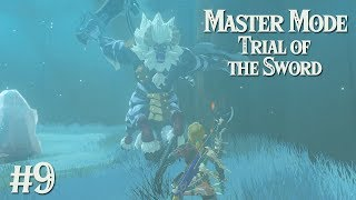 legend of zelda breath of the wild master sword trials