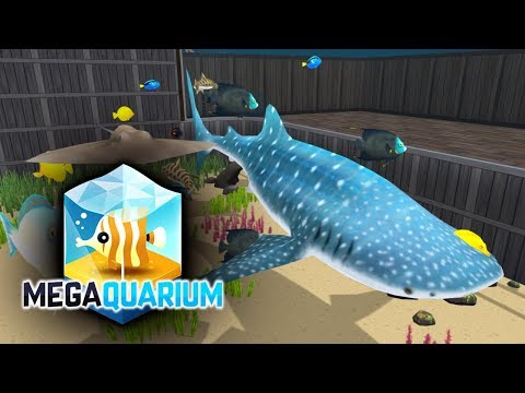 The Whale Shark! - Megaquarium - Part 41