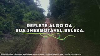Querida Amazonia: Um sonho cultural