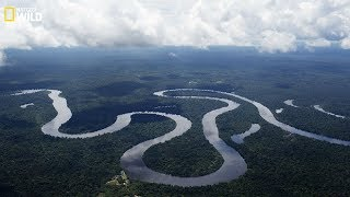 Nat geo Wild - The beauty and danger of the Amazon River - New