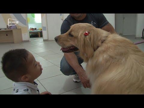Projeto Cão Terapia visita crianças da Apae de São Bernardo