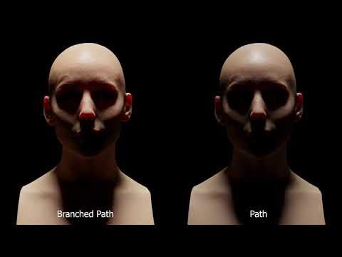 Dermis: Branched PT vs PT in Cycles Showcase