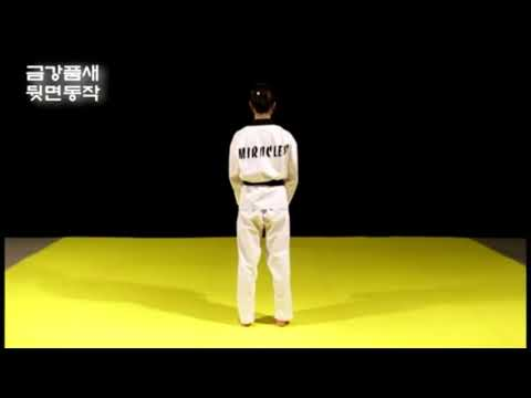 KEUMGANG   Kang Su Ji   Taekwondo Black Belt Poomsae 02