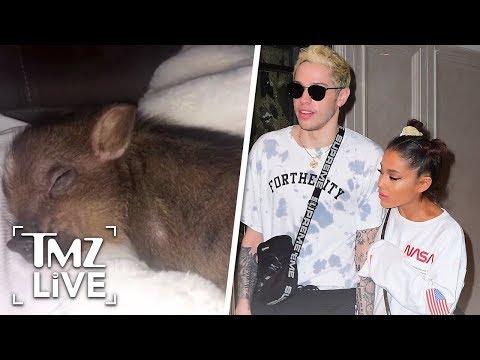 [TMZ]  Ariana Grande Returns Engagement Ring, Keeps Pet Pig