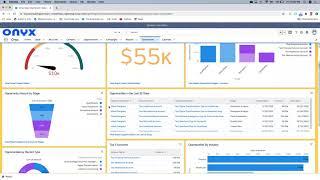 Salesforce Demo - Sales Dashboard Example