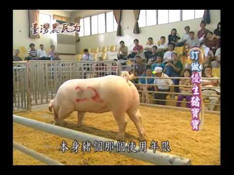 臺灣農民力第26集