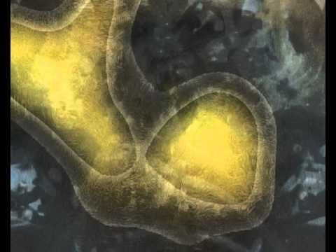 Liszt. Szürke felhők (Nuages Gris). Lévay Jenő videóműve, 2011