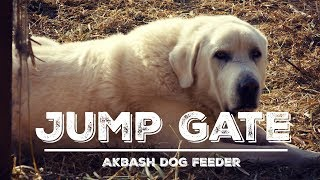 Jump Gate Modification -  Revisiting the Automatic Livestock Guardian Dog Feeding Station