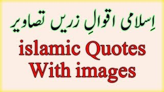 New Islamic Quotes Images | Urdu Islamic Quotes | Aqwal E Zareen | Best Quotes About Islamic Life
