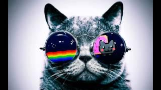 Chingona música electrónica (dj corte pro)