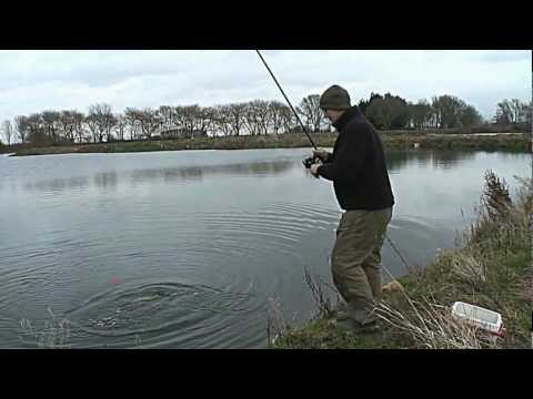 Mick Brown fisker gedder med død agnfisk under flåd