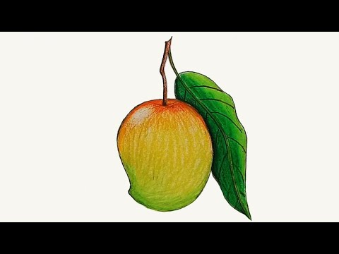 Download How to draw a mango step by step HD Mp4 3GP Video and MP3