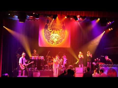 Jealous Again / Twice as Hard -Cursed Diamond (Black Crowes Tribute) LIVE @ Glass Cactus